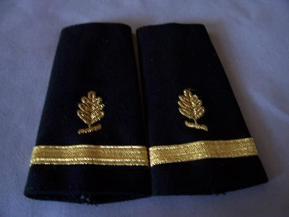 USN Ensign Medical Service Corps Epaulets